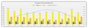 Energie-Verbrauchskosten-Kontrolle