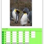 Fotokalender 2018 selbst erstellen